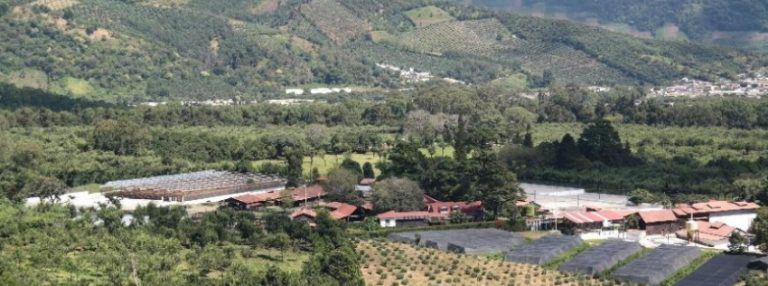 Colombia – Crop to Cup